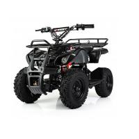 Электроквадроцикл PROFI HB-EATV 800N-19 V3